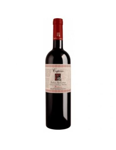 Feudi di Guagnano Cupone Salice Salentino Riserva, Italia, Rosu, Sec, 0.75L, 13.5% ABV