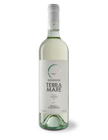 Feudi di Guagnano Terramare Fiano Salento, Italia, Alb, Sec, 0.75L, 12.5% ABV