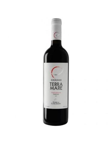 Feudi di Guagnano Terramare Negroamaro Salento, Italia, Rosu, Sec, 0.75L, 12.5% ABV